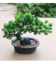 Chậu Cây Bonsai Dáng Cây Thông OEM 2 – Kiểu dáng trường thọ xanh lá